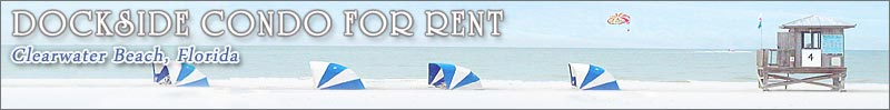 Bella Rosa Condos Home Page Clearwater Beach Sand Key